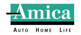 Color Amica Logo black AHL_4C